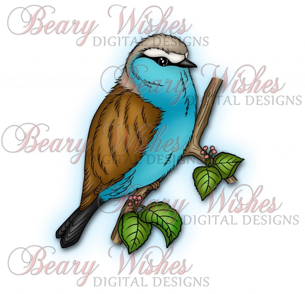Blue-Boy-WM-Color
