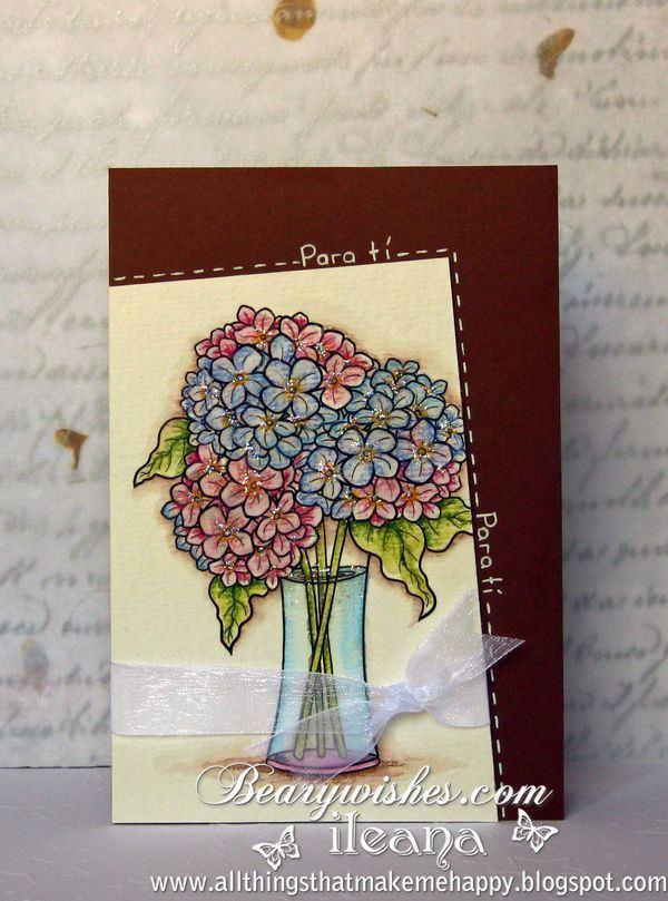 ileana-hydrangea_blooms3